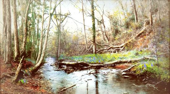 Greyfield Woods